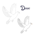 Educational game connect dots to draw dove bird vector image
