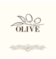 Olive label vector image