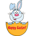Cartoon rabbit in easter egg vector image vector image