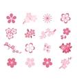 Cherry blossom japanese sakura icon set vector image