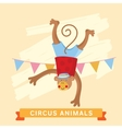 Circus Monkey animal series vector image
