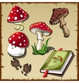 Set of poisonous mushrooms and cookbook vector image