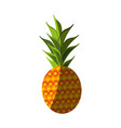 fresh pineapple fruit vector image