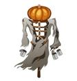 Scarecrow with pumpkin head symbol of Halloween vector image