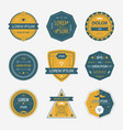 Set of abstract geometric labels icons vector image