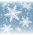 Christmas snowflakes on a blue background vector image