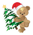 cute bear in a red hat with new years fir-tree vector image