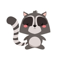 cute raccoon cartoon icon vector image