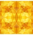 Honey crystal abstract pattern vector image vector image