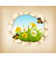 Hole in paper revealing a spring background vector image
