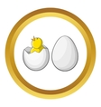 Chick in egg icon vector image