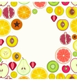 Fruit Slices Round Frame vector image