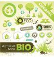 eco concept elements vector image