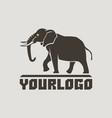 elephants logo sign pictogram-01 vector image