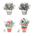 flowers in pots painted black line on a white vector image