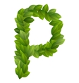 Letter P of green leaves alphabet vector image vector image