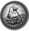 american bald eagle usa natioal symbol vector image