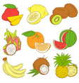 Outline hand drawn colorfull fruit set flat style vector image