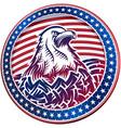 american bald eagle usa natioal symbol fourth vector image vector image