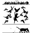 Cat amongst pigeons vector image