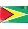 Guyana national flag vector image vector image