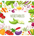 frame of fresh vegetables for your design vector image