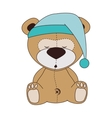 bear teddy hat design vector image
