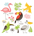 set of an exotic birds vector image
