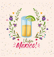 viva mexico colorful poster with tequila glass vector image