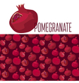 red simple pomegranate pattern vector image