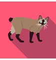 Cats of different breeds with long shadow vector image