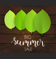 summer sale green leaves background vector image vector image