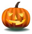 pumpkin with ominous eyes vector image