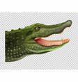 crocodile head on transparent background vector image
