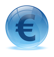 3D glass sphere and euro icon vector image vector image