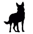 German Shepherd Silhouette vector image