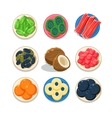 Sweet and Colourful Candied Fruits Set vector image