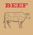 Scheme of Beef cuts vector image