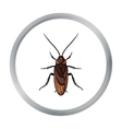 Cockroach icon in cartoon style isolated on white vector image