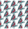 Seamless pattern with hand drawn bullfinch birds vector image