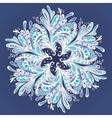 Winter Mandala vector image