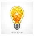 Orange light bulb vector image