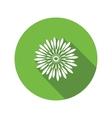 Chrysanthemum flower icon Floral symbol Round vector image