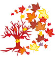 Autumn Leaves Fall vector image vector image
