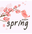 spring season bird sakura background image vector image