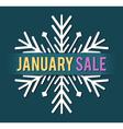 january sale vector image