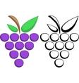 Grapes symbols vector image