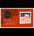 Farm animal background with pig vector image