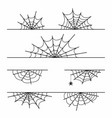spider web set isolated on background halloween vector image