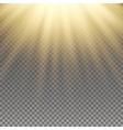 Yellow warm light effect vector image